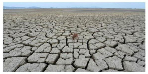 为什么天气热的越来越早了?2018或再创高温纪录